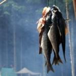 Juancho's Smoked Fish Dip